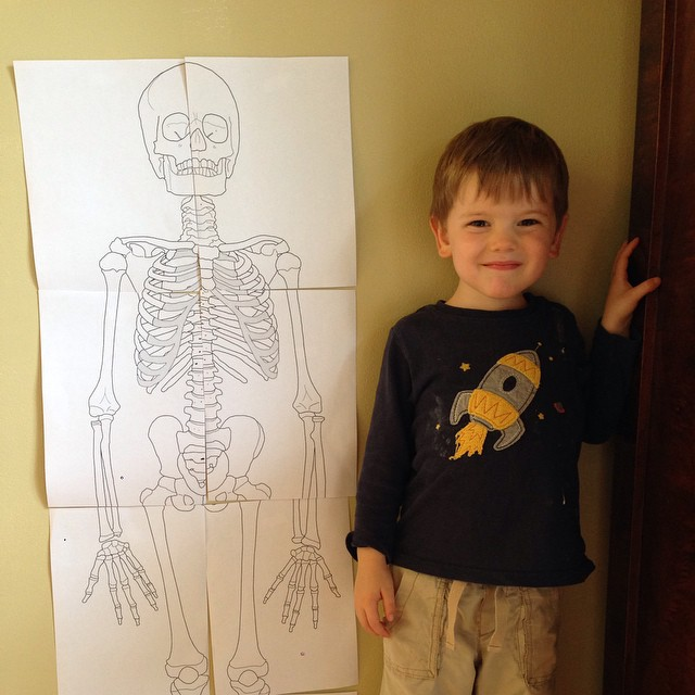 Learning about bones today was a big hit! #joyschool #scotter